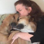 New Study Will See if Kissing Your Dog Is Good for Your Gut Health