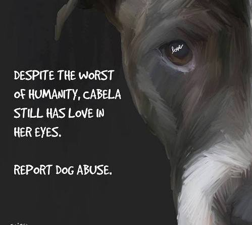 cabela dog abuse poster