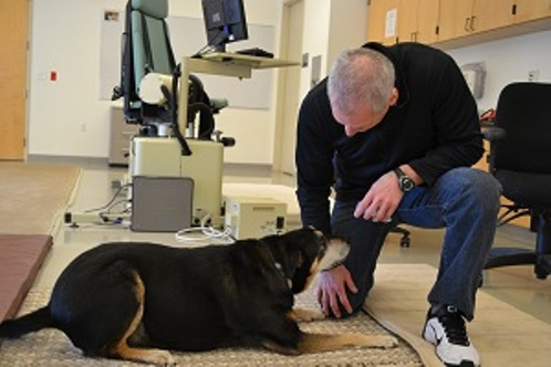 dog sniffing out thyroid cancer