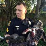 Tampa Police Officers Stop Train and Rescue Dog Tied to Tracks