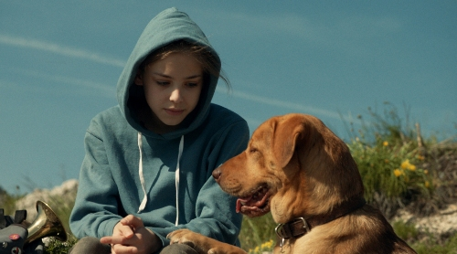 White God movie girl and dog