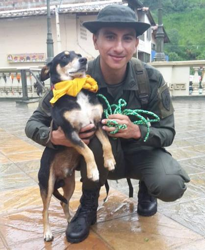dog rescued from colombia river