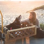 Ike's Mom Donates Custom-Built Home Depot Wagon to Another Dog