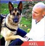 Axel Service Dog finalist AHA Hero Dog Awards