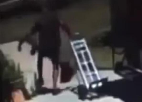 UPS driver kicks dog