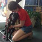 Over 17,600 Pets Find Forever Homes on Clear the Shelters Day