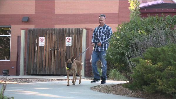 soldier reunited with military dog