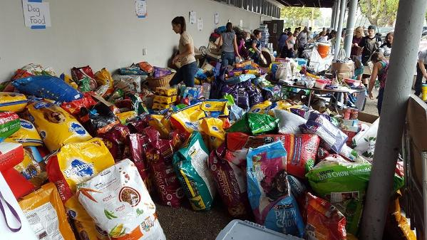 donations for Valley Fire wildfires victims
