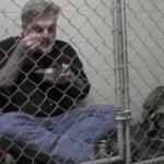 Big-Hearted Veterinarian Enjoys a Meal with Scared Dog in Cage [Video]