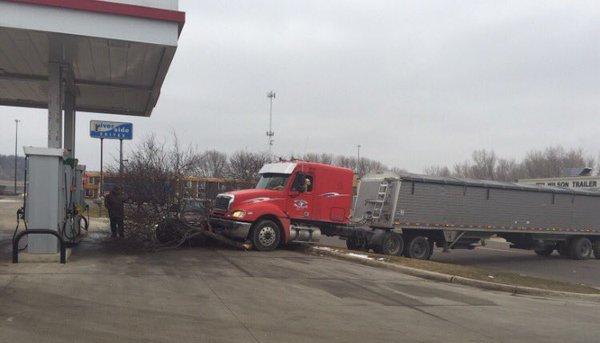 dog drives semi truck into tree