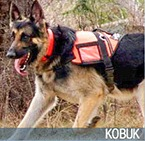 Kobuk 2016 Hero Dog Awards finalist