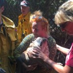 Firefighters Rescue 14-Year-Old Bulldog Trapped in Well for 4 Days