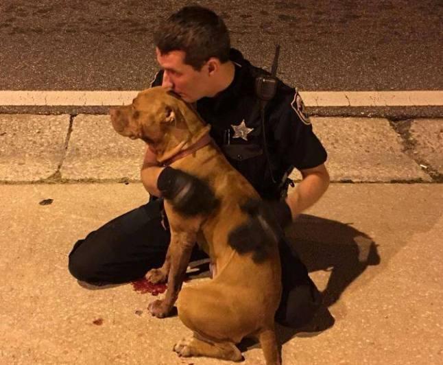 Florida deputy comforts abandoned Pit Bull