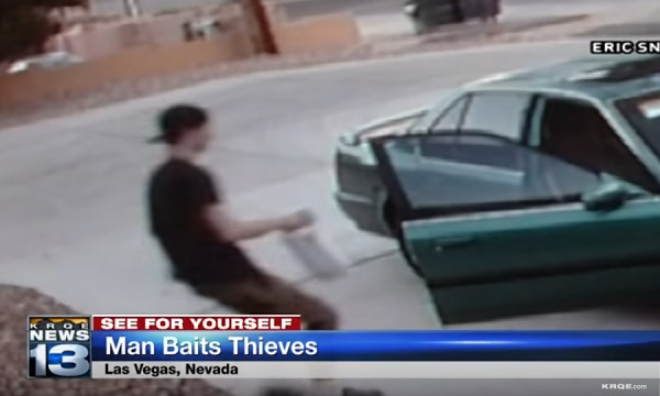 thief steals box containing dog poop