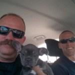 San Bernardino Detectives Rescue Stolen Puppy and Drive Him Home