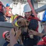 2 Women and Their Dogs Lost at Sea for 5 Months Rescued by Navy