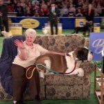 Show Dogs, Schmo Dogs: New 'American Rescue Dog Show' Features Prizeworthy Mutts