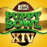 What to Watch on Super Bowl Weekend If You Love Dogs