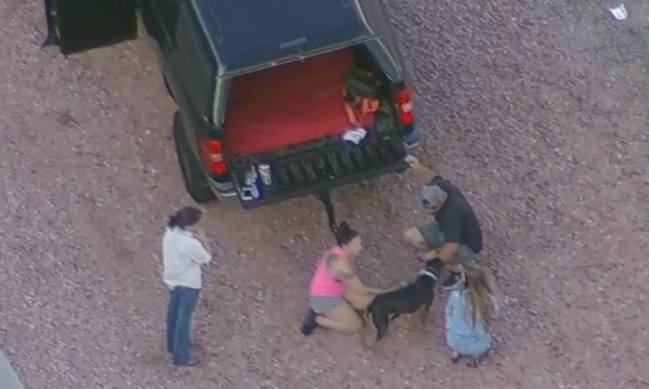 couple rescues dog from Arizona freeway