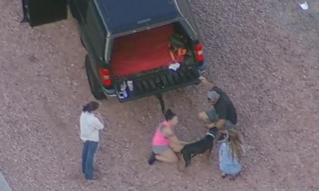 couple rescues dog from Arizona freeway