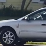 Doggie Donuts: Yet Another Reason Not to Leave Your Pet Alone in Your Car
