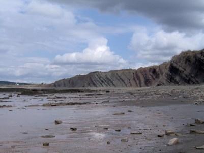 Осадочные отложения в Джоггинсе, Новая Шотландия (Канада). Слои имеют наклон около 30 градусов и уложены вертикально более чем на километр вглубь