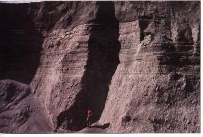 Осадочные слои, сформировавшиеся в 1980 году на горе Сент-Хеленс, уже стали хрупкими к 1983 году. Взято из «Гранд-Каньона: памятник катастрофе» Д-ра Стива Остина