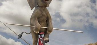 L'elefante che cammina sulla corda