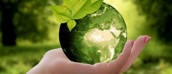 Vuoi diventare naturopata?