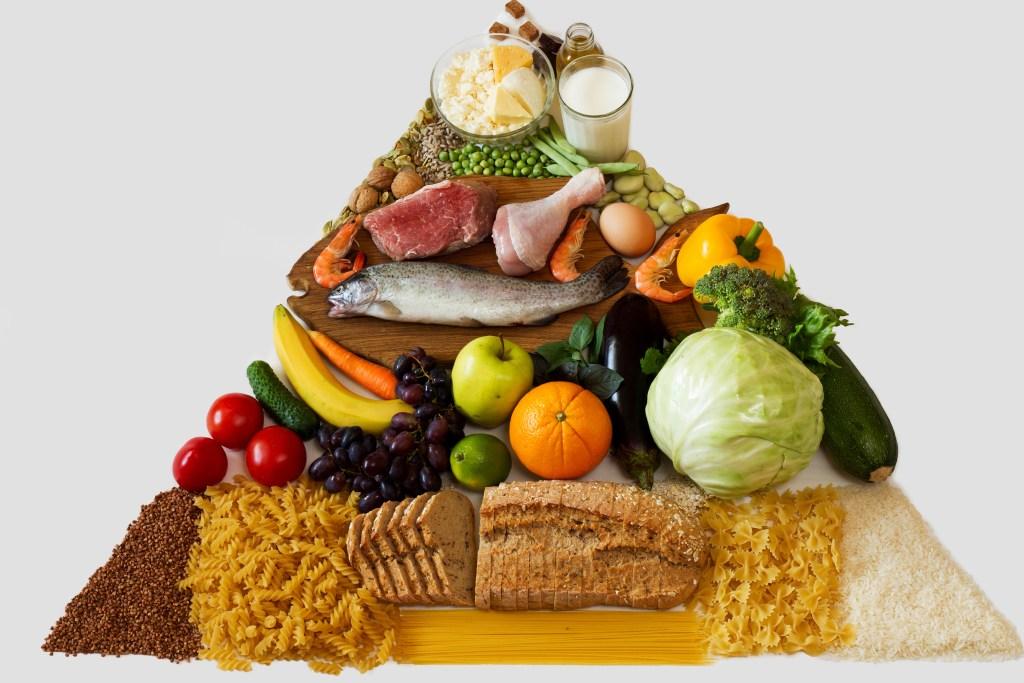 prossimi corsi: alimentazione