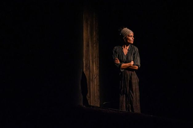 Diana Bentley in Knives in Hens Photo by Dahlia Katz
