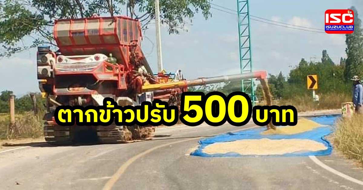 rice fine 500 thb