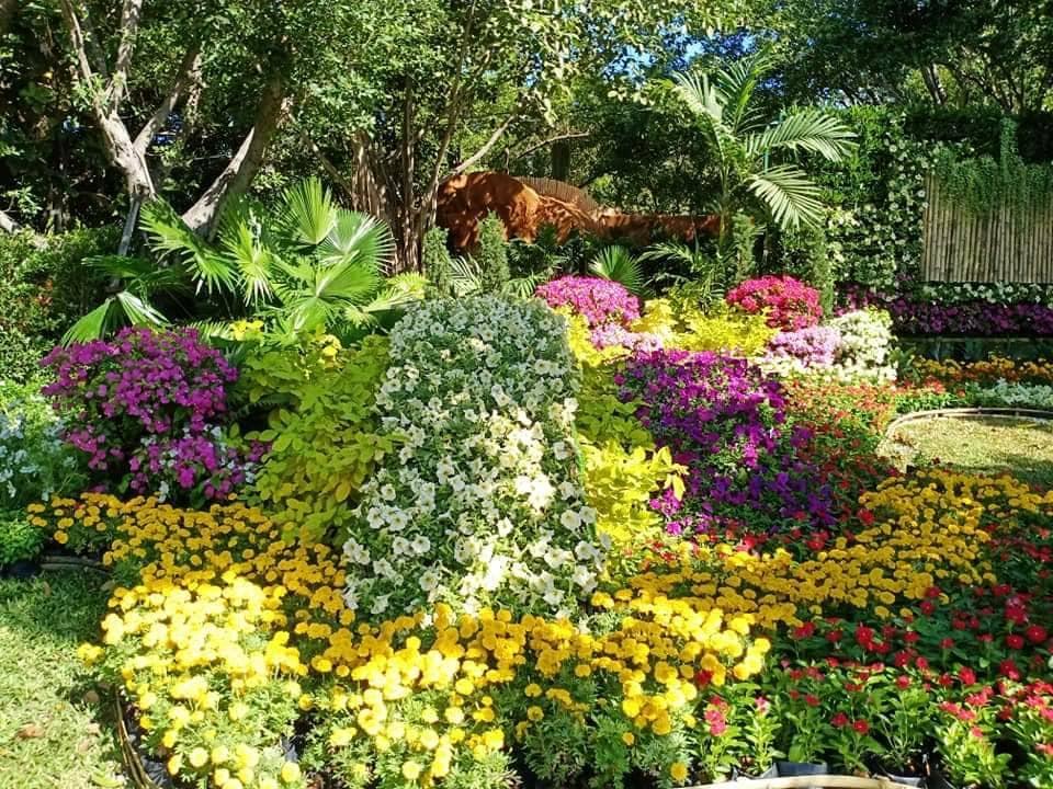 garden rama9 03
