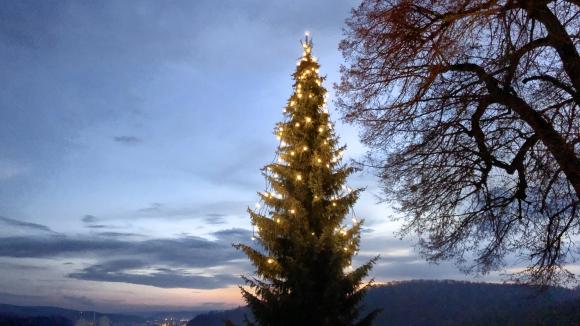 Weihnachtsbaum im Schloss Hellenstein in Heidenheim an der Brenz