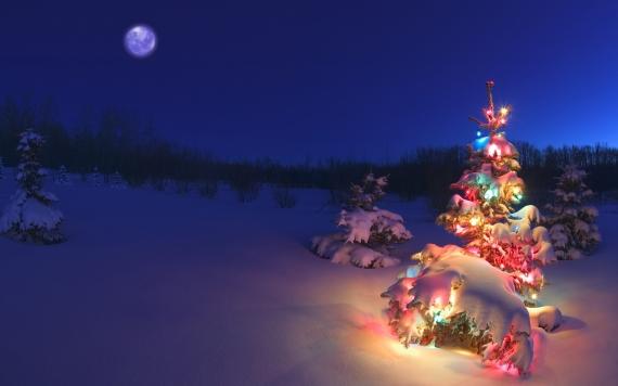 Holiday Lights theme für Windows Windows 7, 8 und 10