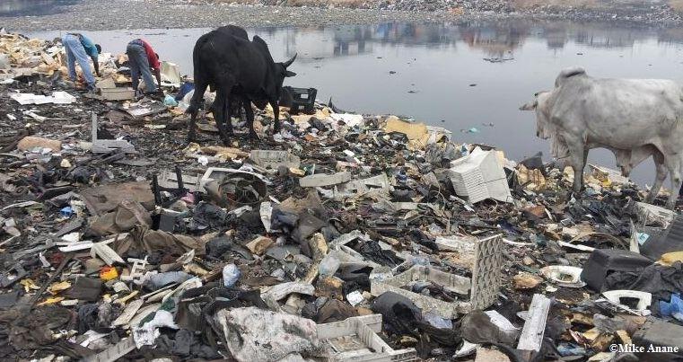 Illegal handel med plastavfall ökar i världen