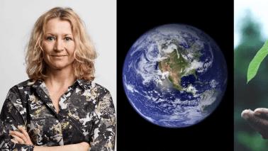 Sting lanserar nytt acceleratorprogram för klimat-bolag 1