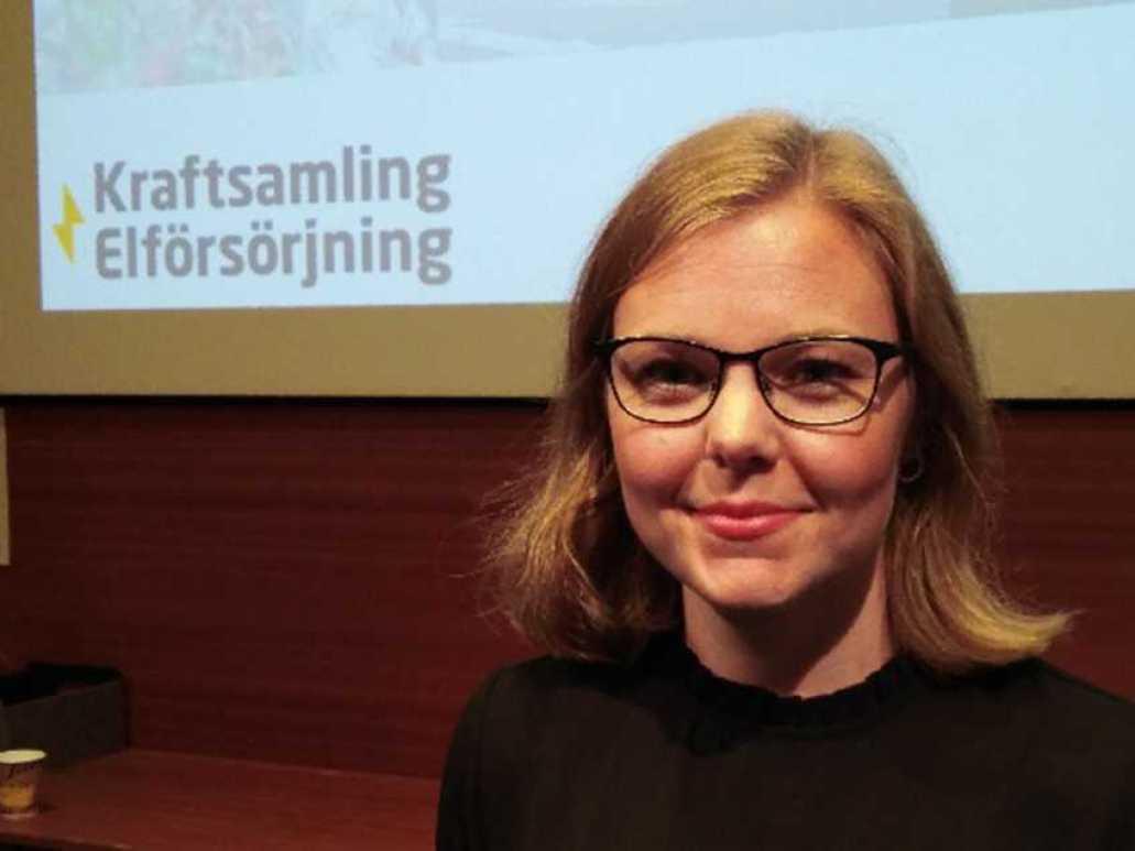 Ny rapport från Svenskt Näringsliv: Dramatiskt ökat elbehov kräver kraftigt utbyggd infrastruktur 1
