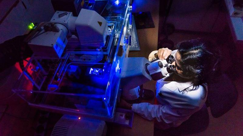 Ny spridningsväg för Alzheimers sjukdom upptäckt