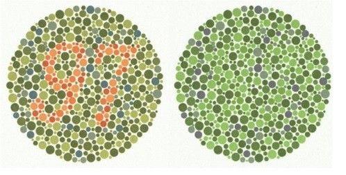 Färgblindhet – så funkar det: Är du färgblind utan att veta om det?