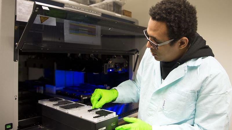 Metod att upptäcka hudcancer i tidigt skede avgörande för överlevnadstid