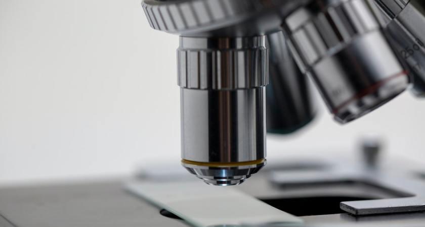 Stärkt forskning inom hälsa och välfärd rustar Sverige för framtiden