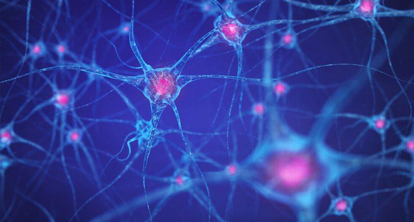 Klinisk studie fokuserar på MS som botbar sjukdom