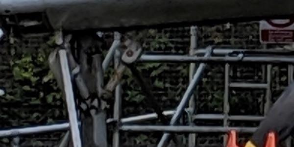 gannetx5-p3-cropped