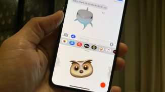 New-Animoji-12.2-beta-owl