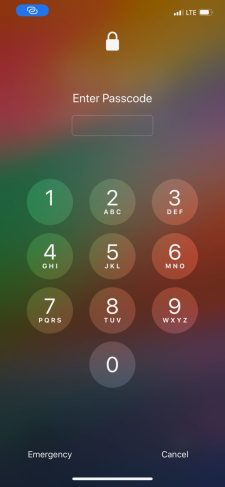 IntelligentPass-2-768×1663