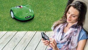 Slå græsset fra din ferie 1