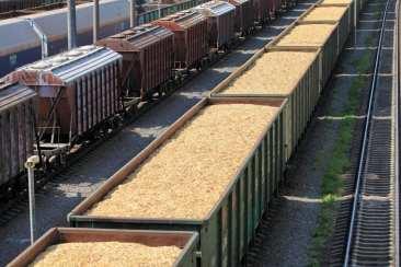 Nye støttesatser i 2020 for biomassebaseret elektricitet 1