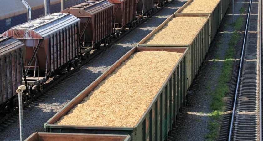 Nye støttesatser i 2020 for biomassebaseret elektricitet