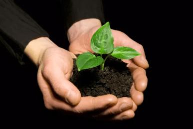 Bæredygtighed nyt pejlemærke i Rødovre 1